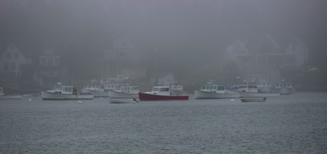 Misty Harbor - NHP-178