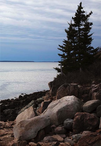 Twilight at Bass Harbor - NHP235