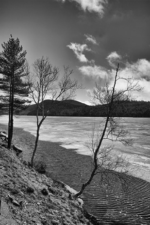 Wind on The Water BW - NHP221B